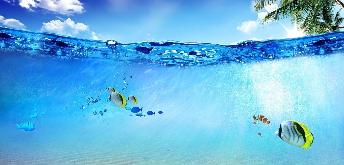 Viedeň - Hurghada od 458 EUR